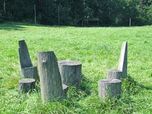Ringing Cedars Kin's Settlement