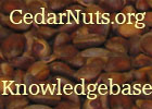 Cedar Nuts Resources
